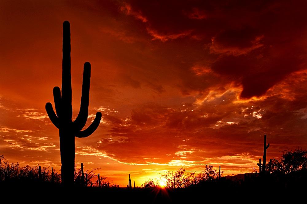 Arizona Private Investigator